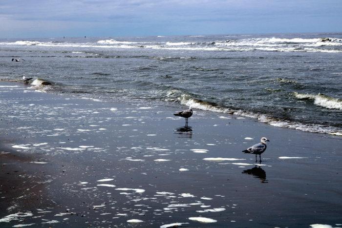 Zandvoort