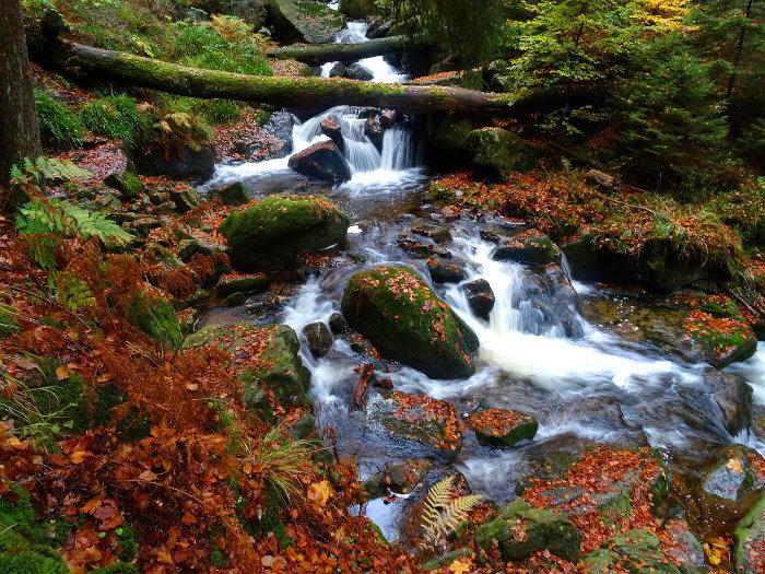 Reisefotografie Harz