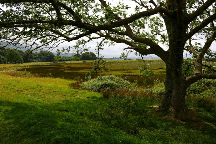 Reiseroute Wales Llanfairfechan