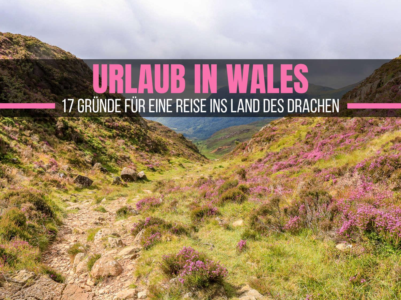 Urlaub in Wales: 17 Gründe für eine Reise ins Land des Drachen